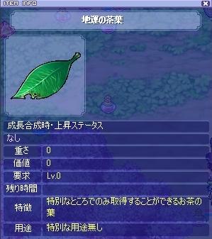 これはよい葉っぱ