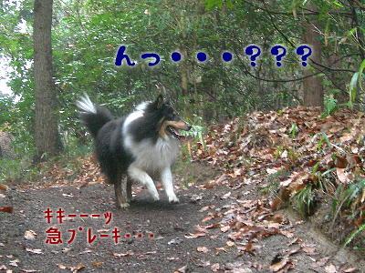 090219_g_05.jpg