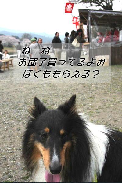 090414_g_02.jpg