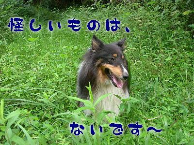 090914_04.jpg