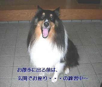 091018_07.jpg