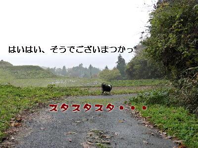 091207_02_20091207180147.jpg