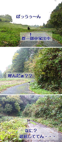 091220_01.jpg