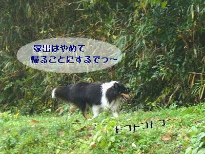 091220_04_20091220174254.jpg