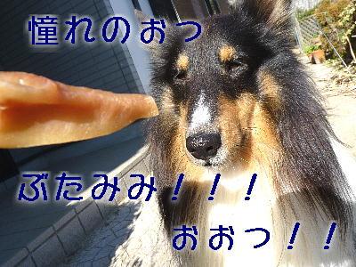 091220_05.jpg