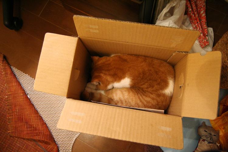 箱ですか1