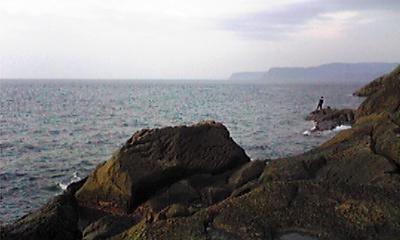 隠岐の島 大森島 ベット