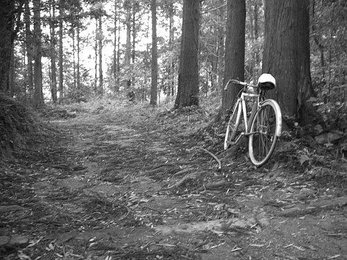 自転車・・・・