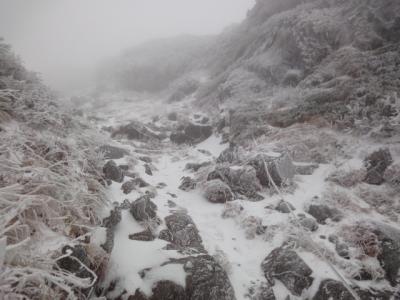 羅臼岳 067