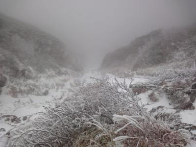羅臼岳 066