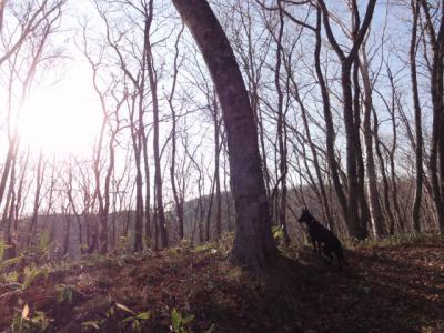 村田公園・ホッケー 028