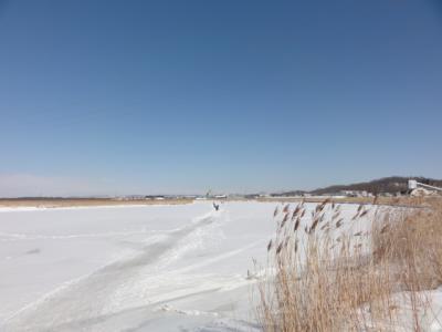釧路川 002