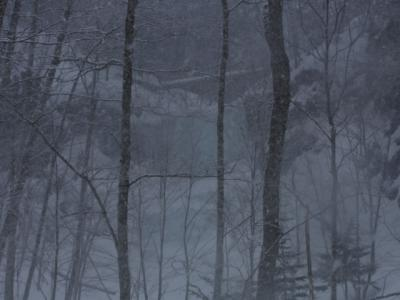 無名の滝 033