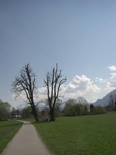 2008_04142007october0014.jpg