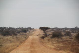 2011kenya - 0045