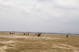 201108kenya - 0015