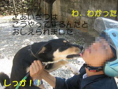 IMG_0032-1