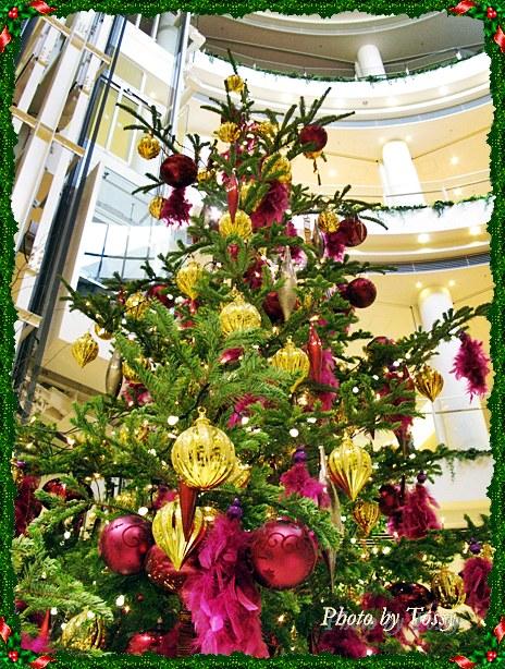 阪急ガーデンズのクリスマスツリー