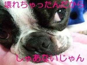 2006_10240028.jpg