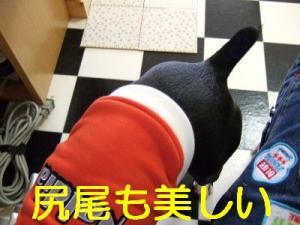 2006_10250024.jpg
