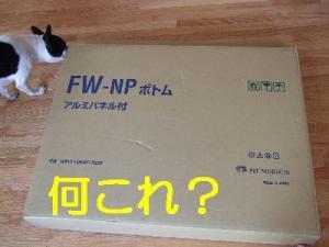 2006_10310017.jpg