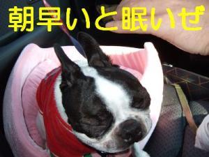 2006_11050016.jpg