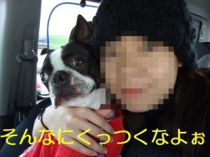 2006_11050041.jpg