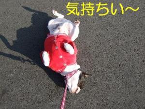 2006_11220124.jpg