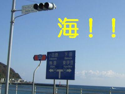 2007_01080111.jpg