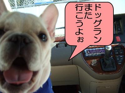 2007_01080130.jpg