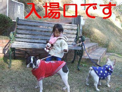 2007_01080143.jpg