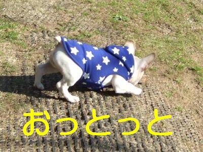 2007_01080157.jpg