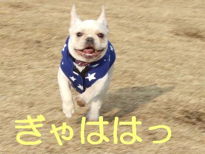 2007_01150061.jpg