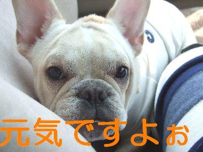 2007_02240051.jpg