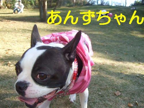 2007_11290151.jpg