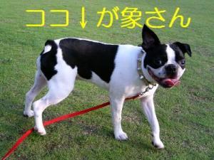 DCF_0022.jpg