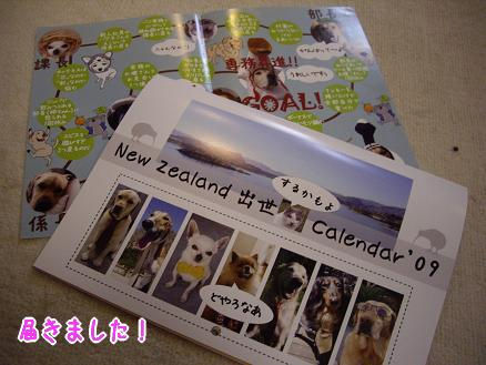 NewZealand 出世カレンダー '09