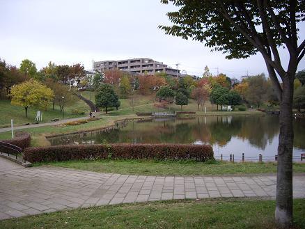 徳生公園の紅葉