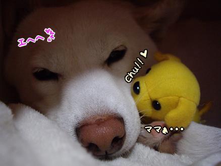 チュ(゜・^*)
