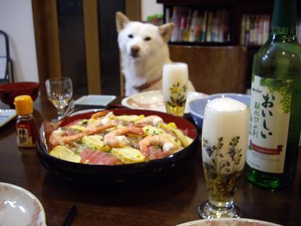 今日のディナーはコレ!