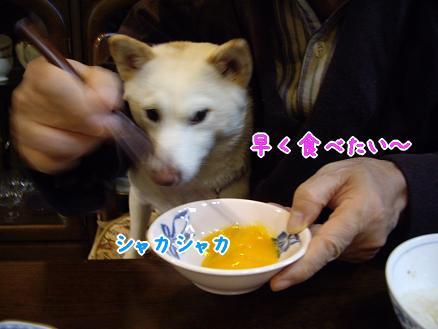 食べたいな~