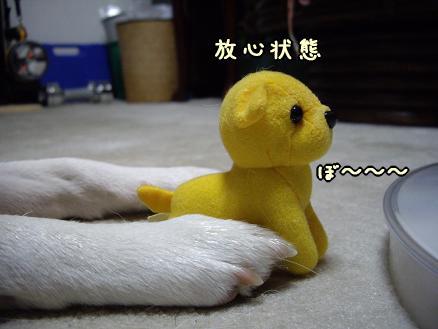 凛太郎・・・放心状態