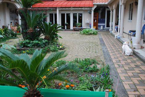 南国風の素敵な中庭