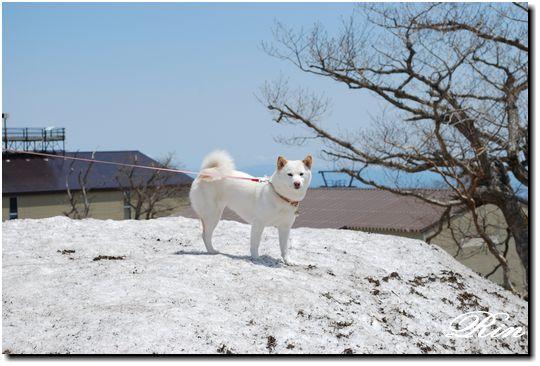 凛ちゃんon the 雪山