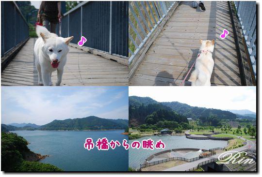 吊橋からの眺め~