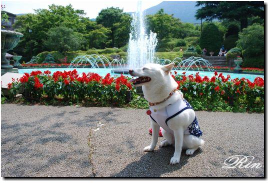 噴水の前で記念撮影☆
