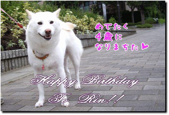 Happy Birthday to Rin♪