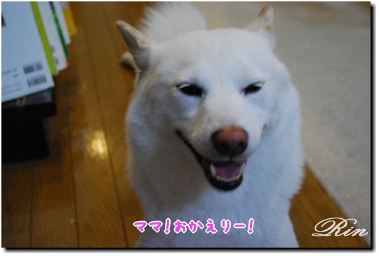 可愛い笑顔でお出迎え~