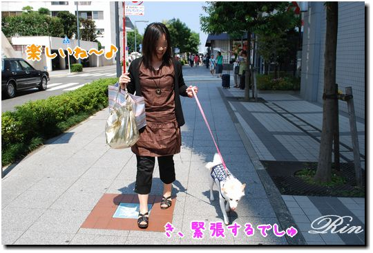 Saoriさんとお散歩~♪