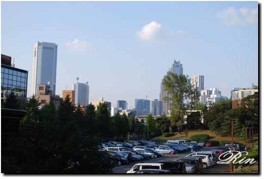 代々木公園から高層ビル群を眺める